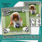 Footballer Collie Card Front