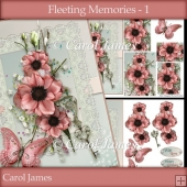 Fleeting Memories - 1