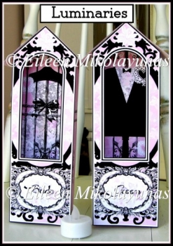 Paris Chic Bride and Groom Luminary Set with Directions