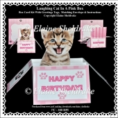 Laughing Kitten In A Pink Box - Box Card Kit With Greetings Tags