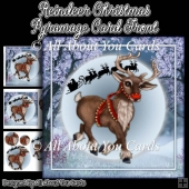 Reindeer Christmas Pyramage Card Front