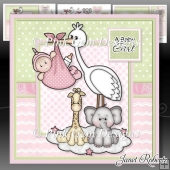 New Baby Girl Stork Mini Kit