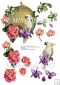 COCKATOO, ROSES & ORCHID STEP BY STEP DECOUPAGE SHEET
