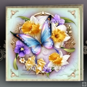Beautiful Butterfly Card for All Occasions Mini Kit