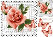 pretty peach roses on lace with polka dots & butterflies 8x8