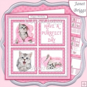 KITTEN SQUARES 7.5 Quick Layer Card & Insert Mini Kit