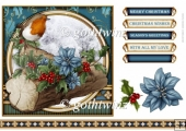 Christmas Robin 7x7 Blue With Matching Insert