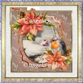 Robin and poinsettia 7x7 card with decoupage