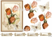 Orange tulips and butterfly 5x7