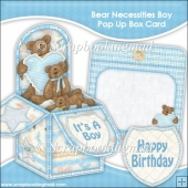 Bear Necessities Boy Pop Up Box Card