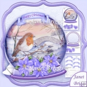 Christmas Snow Globe Robin by Stream Shaped Card Kit