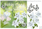 Lovely spring white crocuses and daffodils with butterflies