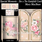 Special Moments - 5in x 7in Gatefold Card