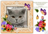 British Blue Shorthair Cat Pansies Butterfly 8 x 8 Card Topper