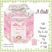 BABY GIRL HEXAGON GIFT BOX AND TAG