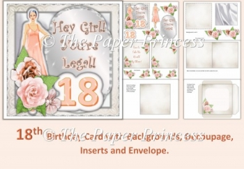 18The Birthday Card female with inserts and envelope