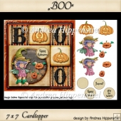 7 x 7 Card Topper BOO