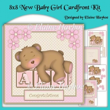 8x8 New baby Girl Cardfront Kit