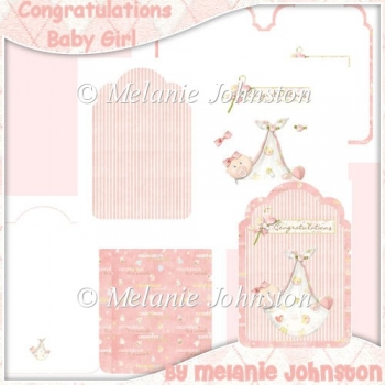 Baby Girl Tag Shape Card