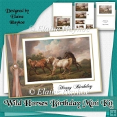 Wild Horses Birthday Mini Kit
