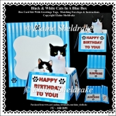 Black & White Cats In A Blue Box - Box Card Kit With Greetings T