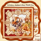 Tiger Cub & Roses 7.5 Decoupage Kit All Occasions