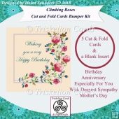 Quick Cut and Fold Floral Cards & Blank Insert Bumper Kit