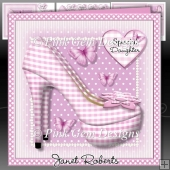 Pink Gingham Shoes Mini Kit