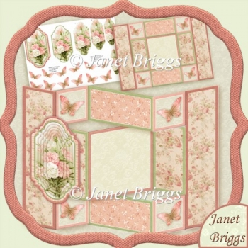 Peach Carnations Floral Tri Shutter Card Kit