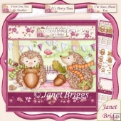 Hedgehogs Birthday Party 7.5 Decoupage & Insert Kit