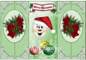 Toony Glass with santa hat & baubles cut and fold quick card