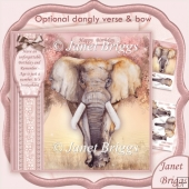 FEMALE ELEPHANT Age is Just a Number 8x8 Birthday Decoupage Kit