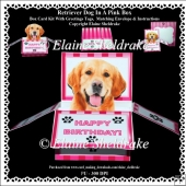 Golden Retriever Dog In A Pink Box - Box Card Kit With Greetings