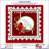 Cardinal Joy On Red 6 x 6 Card Kit With Insert Envelope Bookmark