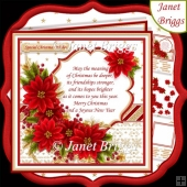 CHRISTMAS POINSETTIA & VERSE 7.5 Decoupage & Insert Kit