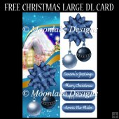 Christmas Large DL Quick Card With Oranaments