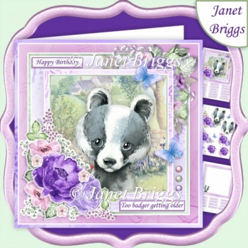 TOO BADGER GETTING OLDER 7.5 Decoupage & Insert Kit