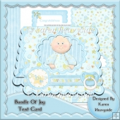 Bundle Of Joy Tent Card