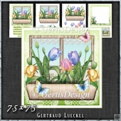 Flower Window Spring Tulips Card Kit 1417