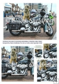 Meerkat on Harley Davidson Motorbike - Pyramid Card Topper