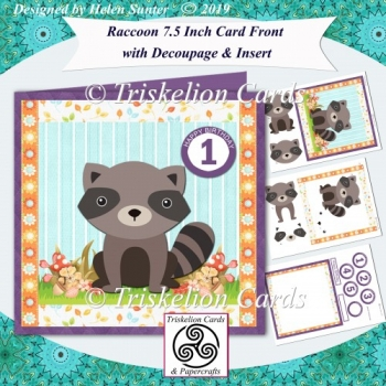 Raccoon Children's Birthday 7.5 Inch Card Front with Age Tiles