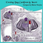 Evening Bag Cardfront & Insert