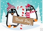 Mr and Mrs Penguin At The North Pole