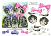 The Cross Eyed Kittens With Decoupage - To Fit 6 x 6 Cards