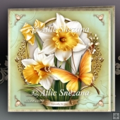 Golden Butterfly Card for All Occasions Mini Kit