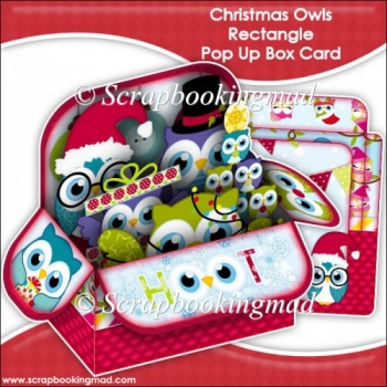 Christmas Owls Rectangle Pop Up Box Card