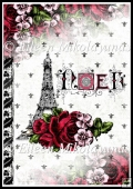 Paris Chic NOEL Backing Background Paper
