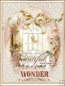 Beautiful Garden Moments Collage for Journals, Crafts, Cards