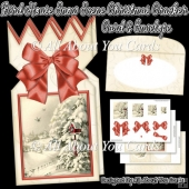 Bird House Snow Scene Christmas Cracker Card & Envelope