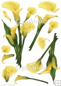 Lily Decoupage Sheet Yellow